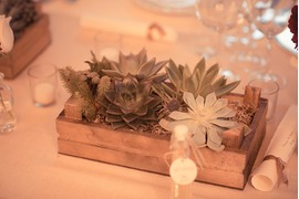 Decoration with succulents for Ravello wedding reception